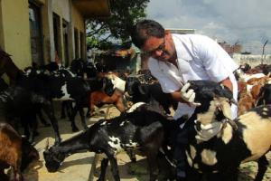 मंगलटारमा अस्थाई पशु क्वारेन्टाइन चेक पोष्टको स्थापना